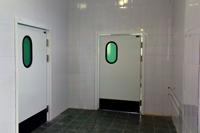 одностворчатые маятниковые двери с окном